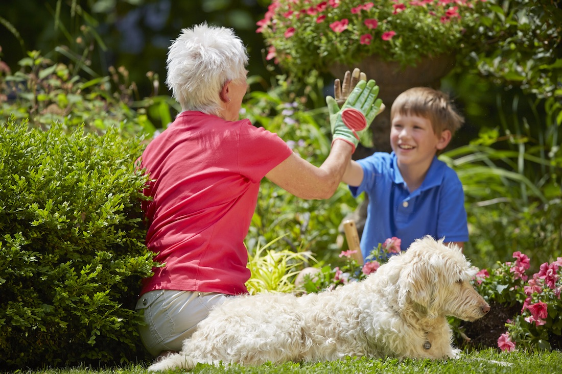 Spring Activites for Seniors