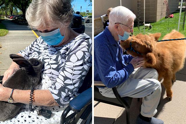 TGG_Blog_AnimalTherapy_640x427_6.10.21