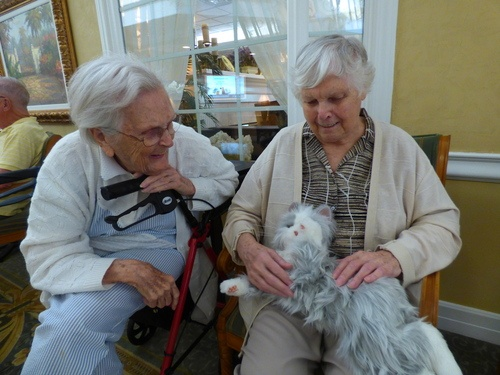 Therapy Pets for Dementia Residents (Batteries Included)